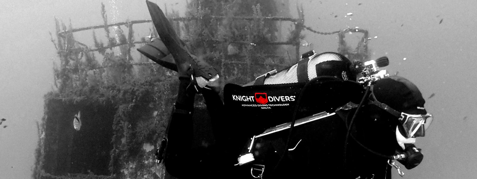 Knight Divers